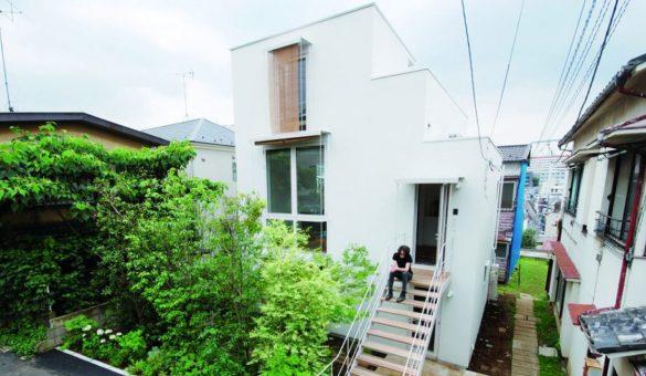bow wow architecture japon comportement