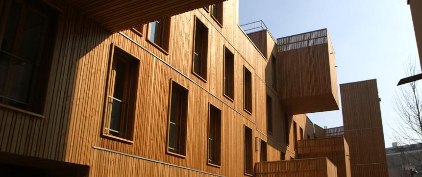 CNRS Matériaux bois